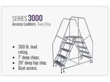 Series 3000 Access Ladders Twin Step